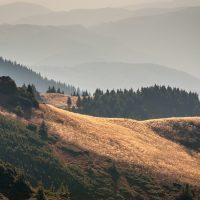 what causes landslides